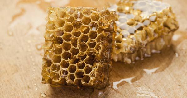 Plastic Wise & Bee's Wax Wraps Workshop
